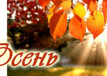 ОСЕНЬ. Музыка осени. Красивая осенняя мелодия любви без слов. Музыка дождя. Осенний танец