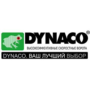 dynaco300